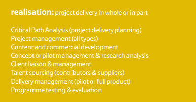 REALISATION: Project delivery in whole or in part